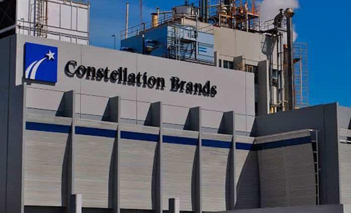 Estamos listos para conversar con AMLO, dice Constellation Brands