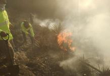 Suman 10 incendios forestales en lo que va del año en SLP