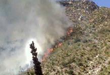 Incendio forestal a punto de alcanzar viviendas