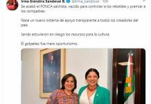 Insultantes, dichos de Irma Eréndira Sandoval: artistas