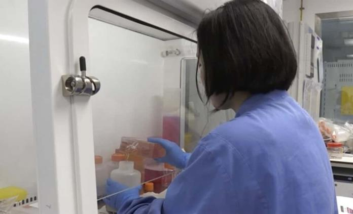 Industria farmacéutica mexicana se suma a búsqueda de vacuna para COVID-19