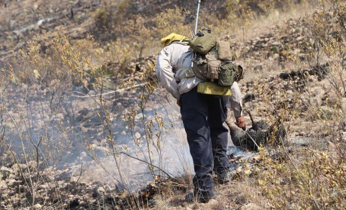 Brigadistas capitalinos apoyan en combate a incendio forestal en la Zona Media