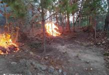 Activan Plan DN-III-E en SLP y otros 9 estados para combatir incendios forestales