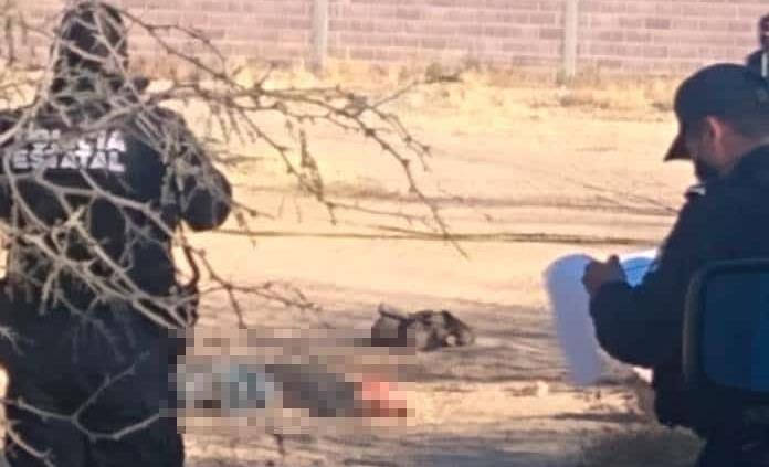 A golpes, asesinan a un hombre en Los Gómez
