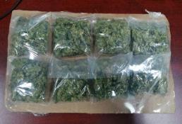 Aseguran a 6 sujetos en posesión de droga