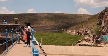 Lirio acuático invade la presa San José