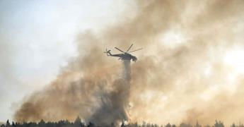 Incendio forestal se acerca a Atenas y amenaza palacio real